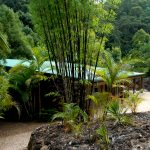 123_0104_gymea_retreat_acacia_block